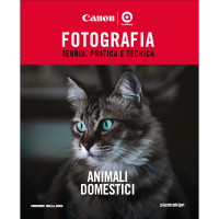 ANIMALI DOMESTICI